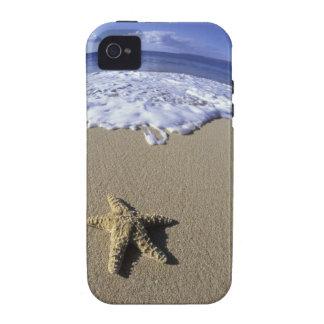 Los E.E.U.U., Hawaii, Maui, playa de Makena, iPhone 4/4S Fundas