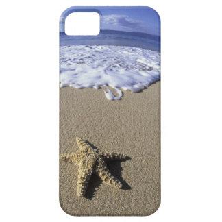 Los E.E.U.U., Hawaii, Maui, playa de Makena, iPhone 5 Carcasa