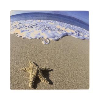 Los E.E.U.U., Hawaii, Maui, playa de Makena, Posavasos De Arce