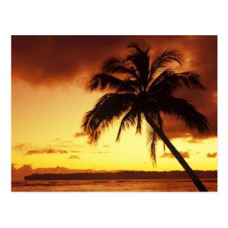 Los E E U U Hawaii Maui puesta del sol colorid Postales