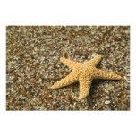 Los E.E.U.U., HI, Kauai, playa de cristal con los  Fotografias