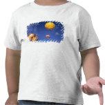 Los E.E.U.U., Idaho, valle de Teton. Globos de Camiseta