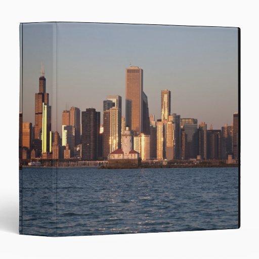 Los E.E.U.U., Illinois, Chicago, horizonte de la c