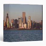"""Los E.E.U.U., Illinois, Chicago, horizonte de la Carpeta 1 1/2"""""""