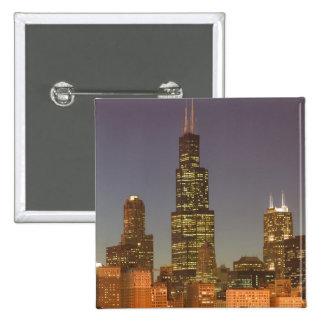 Los E E U U Illinois Chicago Horizonte tarde d Pins