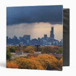 Los E.E.U.U., Illinois, Chicago, paisaje urbano