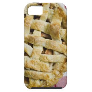 Los E.E.U.U., Illinois, Washington, empanada de Ap iPhone 5 Carcasas