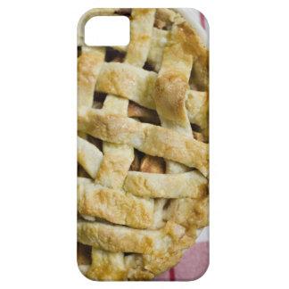Los E.E.U.U., Illinois, Washington, empanada de Funda Para iPhone SE/5/5s