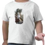Los E.E.U.U., Indiana, castaña: Castaño, cordón, Camiseta