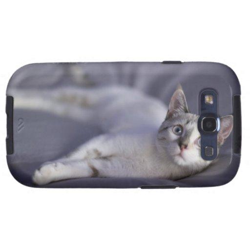 Los E.E.U.U., Iowa, retrato del gatito joven 2 Samsung Galaxy S3 Protector