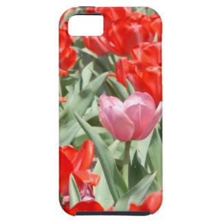 Los E.E.U.U., Kansas, tulipanes rojos con un iPhone 5 Carcasas
