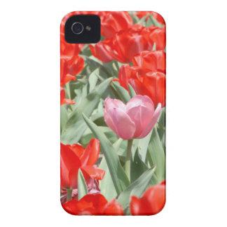 Los E.E.U.U., Kansas, tulipanes rojos con un Case-Mate iPhone 4 Fundas