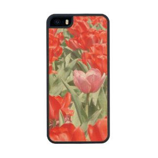 Los E.E.U.U., Kansas, tulipanes rojos con un Funda De Madera Para iPhone 5