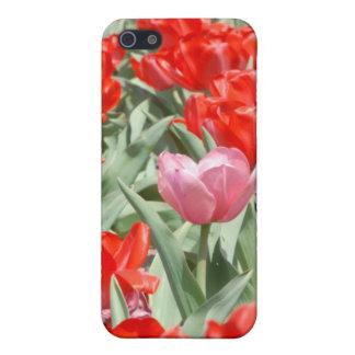 Los E.E.U.U., Kansas, tulipanes rojos con un iPhone 5 Funda