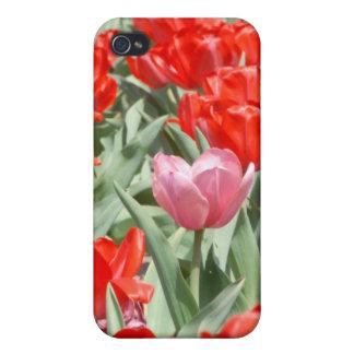 Los E.E.U.U., Kansas, tulipanes rojos con un iPhone 4/4S Carcasa