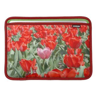 Los E.E.U.U., Kansas, tulipanes rojos con un Funda Macbook Air