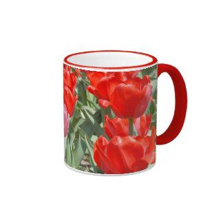 Los E.E.U.U., Kansas, tulipanes rojos con un Taza A Dos Colores