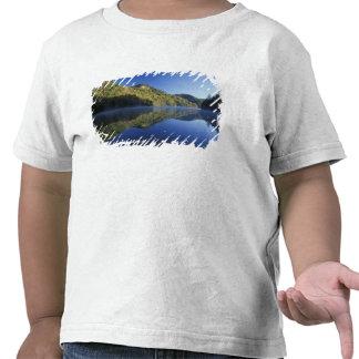 Los E.E.U.U., Kentucky. Bosque del Estado de Camiseta