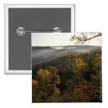 Los E.E.U.U., Kentucky. Bosque nacional de Daniel  Pins