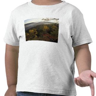 Los E.E.U.U., Kentucky. Bosque nacional de Daniel Camiseta