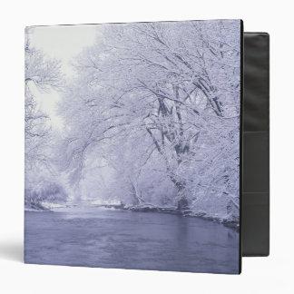 "Los E.E.U.U., Kentucky, Louisville. Nevado Carpeta 1 1/2"""