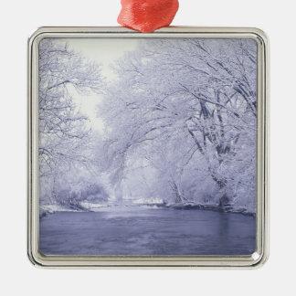Los E.E.U.U., Kentucky, Louisville. Nevado Ornamento De Navidad
