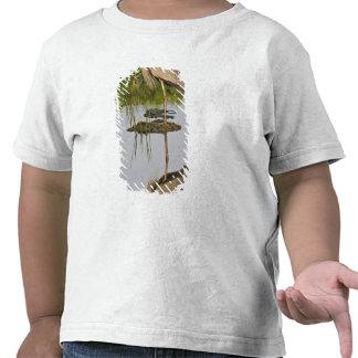 Los E.E.U.U., la Florida, Delray Beach. Garza de g Camisetas