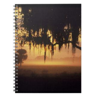 Los E.E.U.U., la Florida, lago Kissimmee. Silueta  Libros De Apuntes Con Espiral