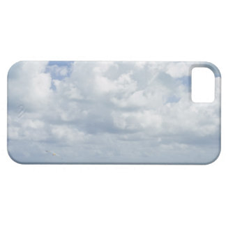 Los E.E.U.U., la Florida, Miami, paisaje con el iPhone 5 Case-Mate Coberturas