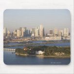Los E.E.U.U., la Florida, Miami, paisaje urbano co Tapete De Raton