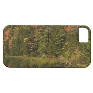 LOS E.E.U.U.; Maine; Acadia NP. Reflexiones de la iPhone 5 Fundas