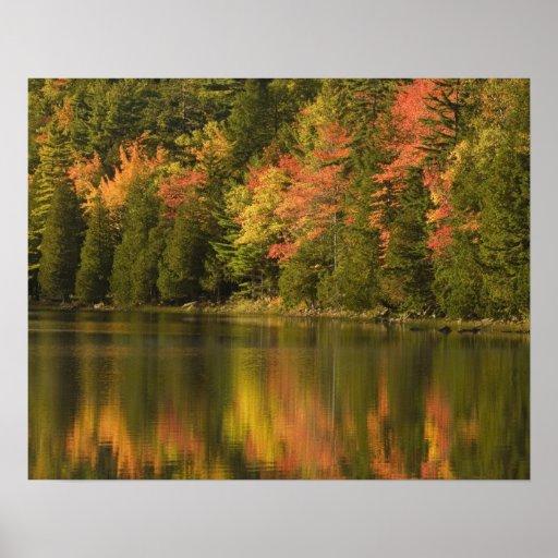 LOS E.E.U.U.; Maine; Acadia NP. Reflexiones de la  Impresiones