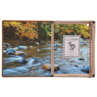 Los E.E.U.U., Massachusetts, bosque del estado de iPad Carcasas