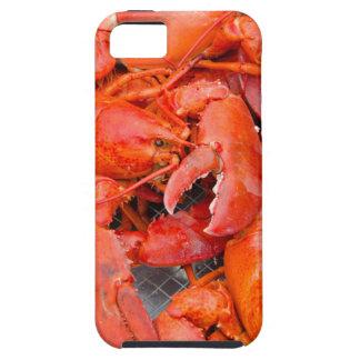 Los E.E.U.U., Massachusetts, Martha's Vineyard Funda Para iPhone SE/5/5s