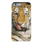 Los E.E.U.U., Michigan, Detroit. Parque zoológico Funda De iPhone 6 Barely There