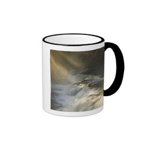 Los E.E.U.U., Michigan, península superior. Rayos  Taza De Café