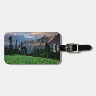 Los E.E.U.U., Montana, Parque Nacional Glacier, Etiquetas Maletas