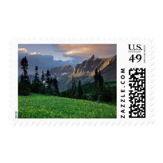 Los E.E.U.U., Montana, Parque Nacional Glacier, Franqueo