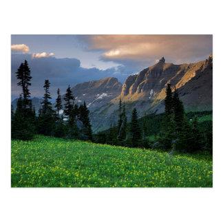 Los E.E.U.U., Montana, Parque Nacional Glacier, Postal