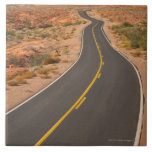 Los E.E.U.U., Nevada, valle del fuego, camino del  Teja