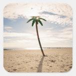 Los E.E.U.U., New York City, Coney Island, palmera Pegatina Cuadrada