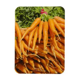 Los E.E.U.U., New York City, zanahorias para la ve Iman