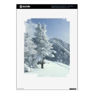 Los E.E.U.U., NH, los árboles nevados arrastran iPad 3 Pegatinas Skins