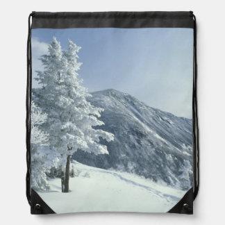 Los E.E.U.U., NH, los árboles nevados arrastran Sn Mochila