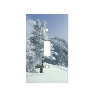Los E.E.U.U., NH, los árboles nevados arrastran Sn Cubierta Para Interruptor
