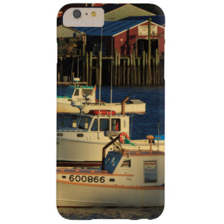 Los E.E.U.U., Norteamérica, Maine, Bernard, Funda Barely There iPhone 6 Plus