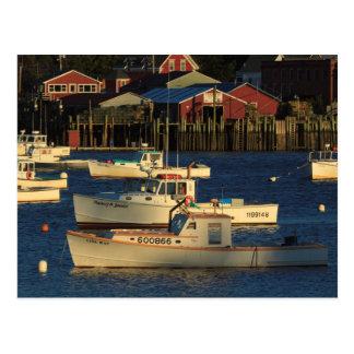 Los E.E.U.U., Norteamérica, Maine, Bernard, Tarjetas Postales