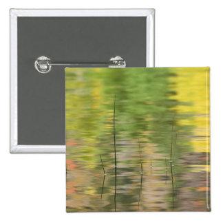Los E.E.U.U., Nueva York, Adirondacks, reflexiones Pin Cuadrada 5 Cm