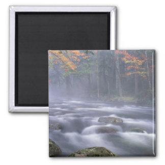 Los E.E.U.U., Nueva York, Adirondacks, río grande  Imán Cuadrado
