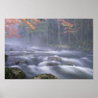 Los E.E.U.U., Nueva York, Adirondacks, río grande  Posters